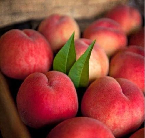 peach new
